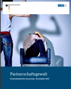 """Das Foto zeigt das Cover der Studie """"Gewalt gegen Frauen"""""""