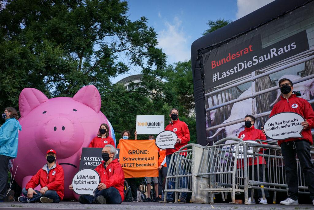 Trotz zahlreicher Proteste, dürfen Schweine weiterhin im Kastenstand gehalten werden. Das Foto zeigt eine Protestaktion.
